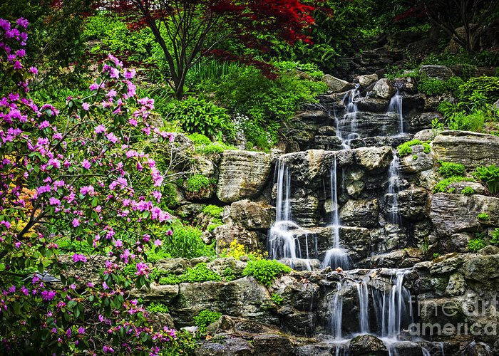 Waterfall Greeting Card featuring the photograph Cascading Waterfall by Elena Elisseeva