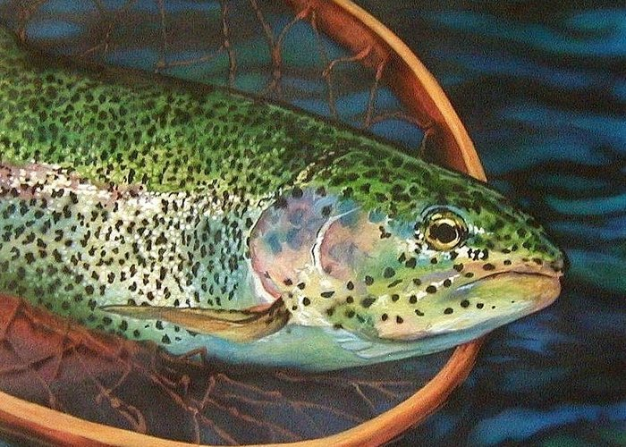 Rainbow Trout Greeting Card featuring the painting Caught On Canvas by Tim Joyner