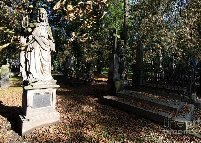 Old Greeting Card featuring the photograph Cemetery by Sarka Olehlova
