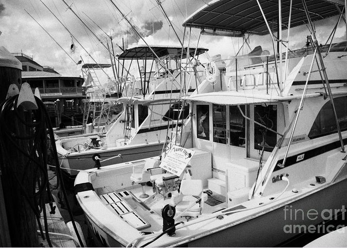 Charter Greeting Card featuring the photograph Charter Fishing Boats In The Old Seaport Of Key West Florida Usa by Joe Fox