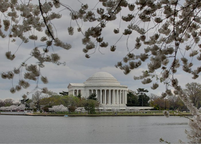 America Greeting Card featuring the photograph Cherry Blossoms With Jefferson Memorial - Washington Dc - 01137 by DC Photographer