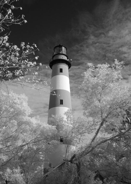 Red Greeting Card featuring the photograph Chincoteague Island Lighthouse by Jack Nevitt