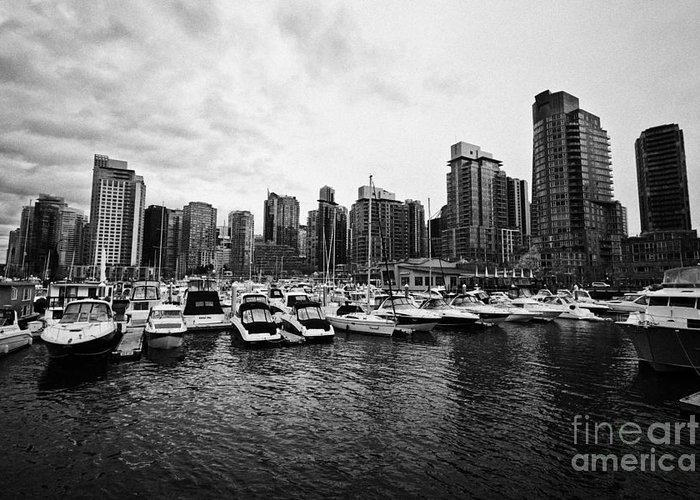 High-rise Greeting Card featuring the photograph coal harbour marina and high rise apartment condo blocks in the west end Vancouver BC Canada by Joe Fox