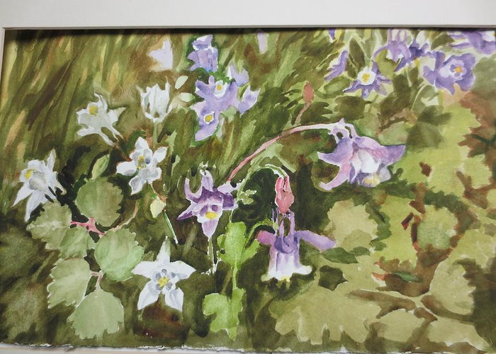 Columbine Greeting Card featuring the painting Columbine by Johanna Engel