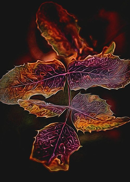Abstract Greeting Card featuring the photograph Detailed Leaves by Betsy A Davis