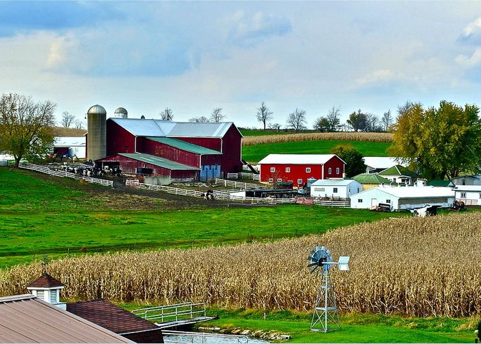 Farm Greeting Card featuring the photograph Down On The Farm by Frozen in Time Fine Art Photography