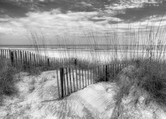 Clouds Greeting Card featuring the photograph Dune Fences by Debra and Dave Vanderlaan