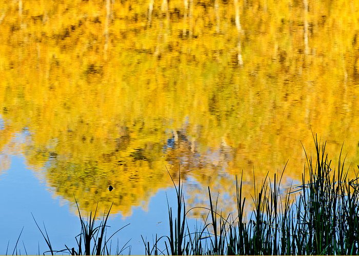 Goose Creek Mountains Greeting Card featuring the photograph Fall Reflections by Elijah Weber