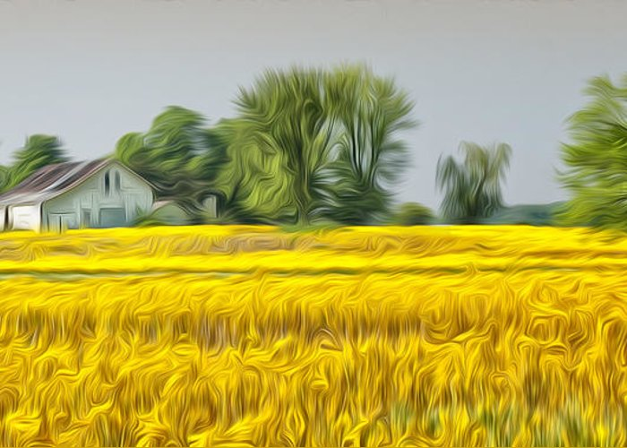 Field Greeting Card featuring the photograph Fields Of Yellow by Brian Mollenkopf
