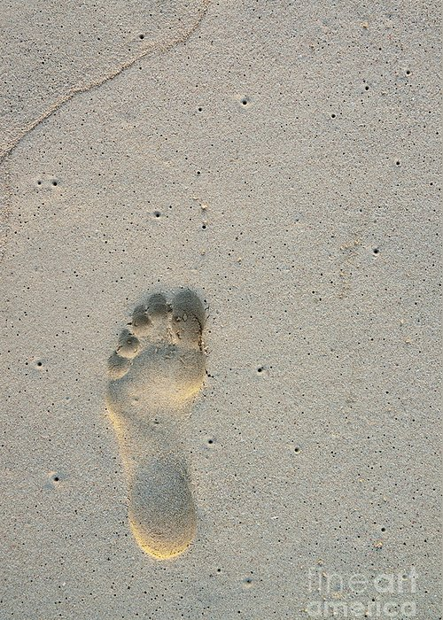 Simplicity Greeting Card featuring the photograph Footprint In Sand On Beach by Sami Sarkis