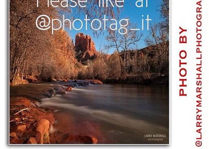 Greeting Card featuring the photograph Friends, My Photo Is In The by Larry Marshall