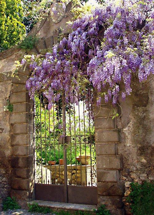 Garden Gate Greeting Card featuring the photograph Garden Gate by Ellen Henneke