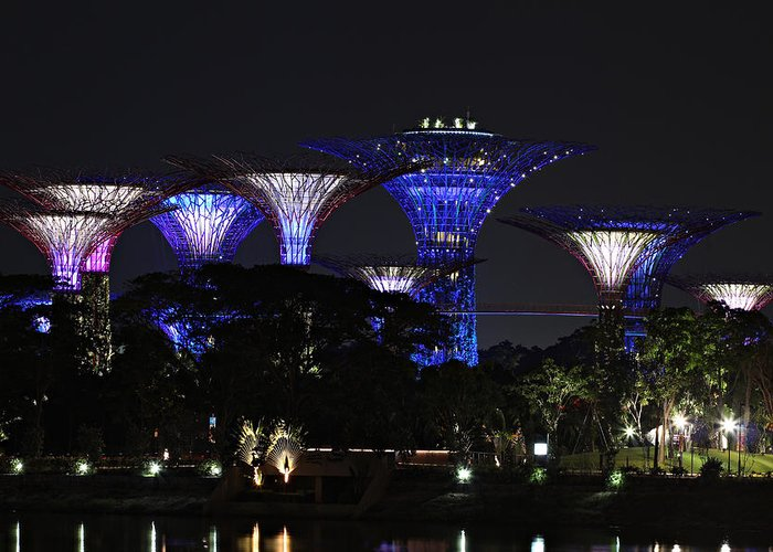 Architecture Greeting Card featuring the photograph Gardens By The Bay by Paul Fell