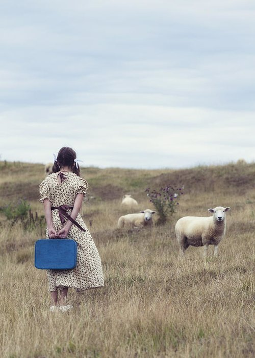 Girl Greeting Card featuring the photograph Girl With Sheeps by Joana Kruse