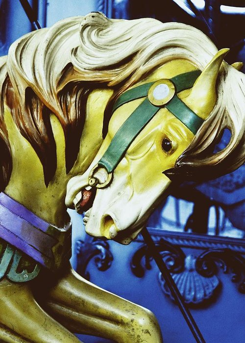 Bryant Greeting Card featuring the photograph Golden Steed by JAMART Photography