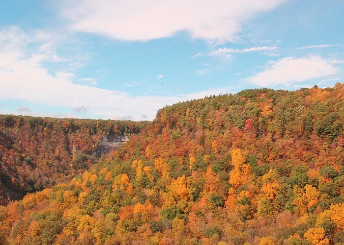 Fall Greeting Card featuring the photograph Grand Canyon Of The East by Laurie Tracy