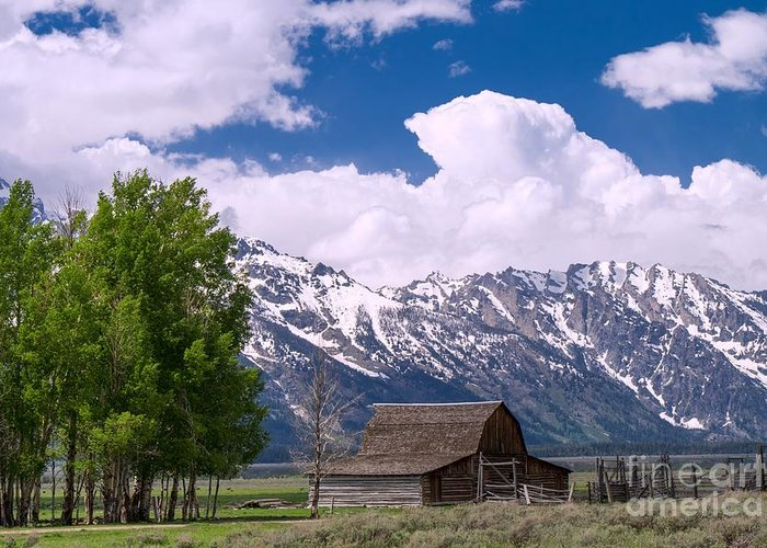 Ansel Adams Greeting Card featuring the photograph Grand Teton Np by Juergen Klust