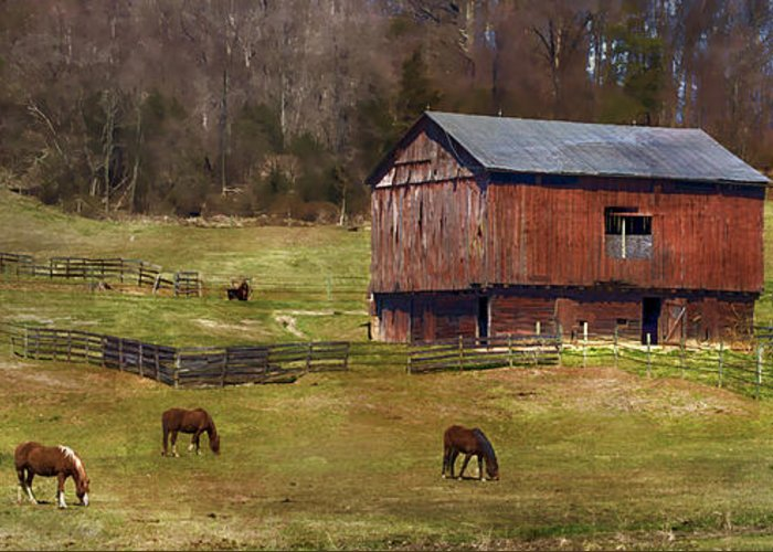 Barn Greeting Card featuring the photograph Grazing by Kathy Jennings
