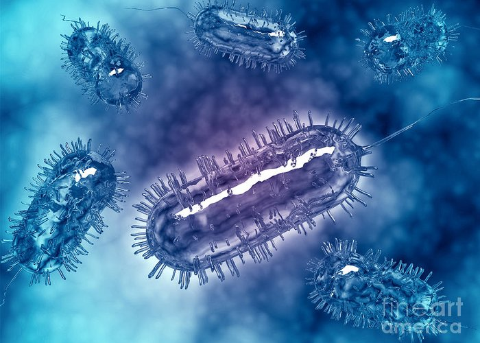 Color Image Greeting Card featuring the digital art Group Of Escherichia Coli Bacteria by Stocktrek Images