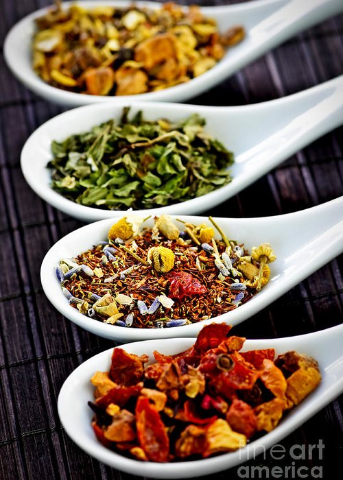 Tea Greeting Card featuring the photograph Herbal Teas by Elena Elisseeva
