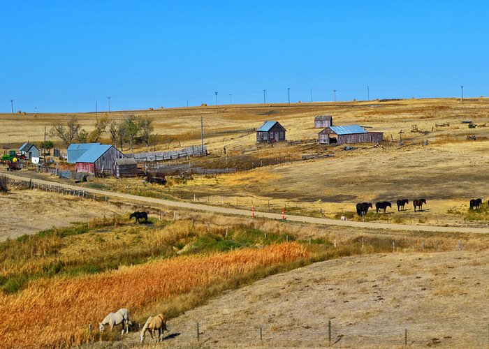 Barns Greeting Card featuring the photograph Home On The Range by Kelly Reber