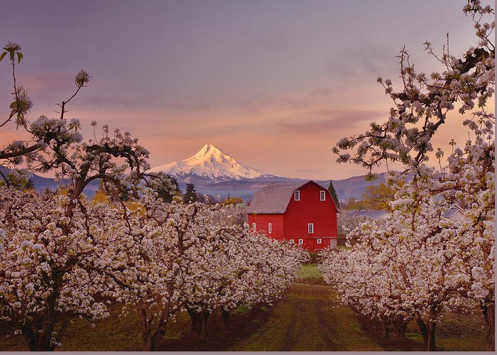 Hood River Oregon Greeting Cards