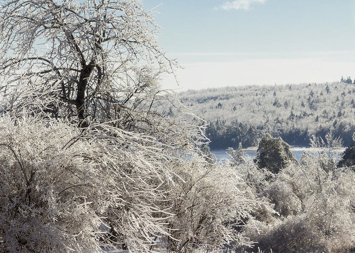 Chipman Greeting Card featuring the photograph Ice Storm - 2013 by Jim Walker