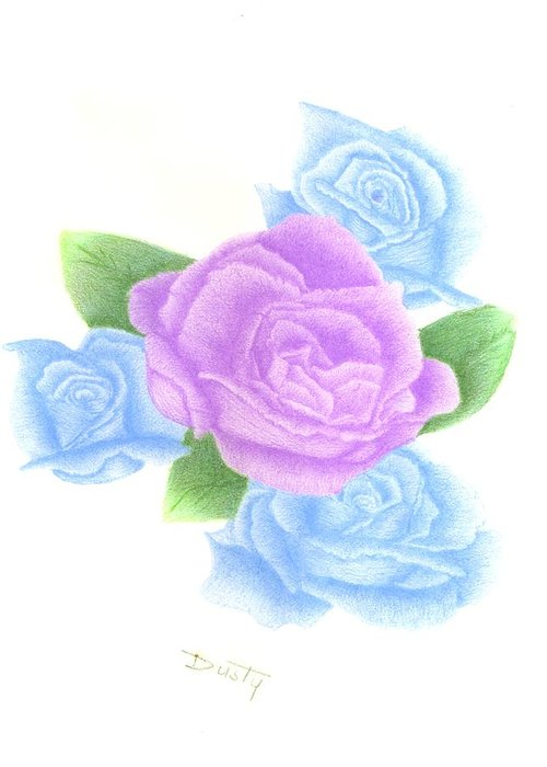 Rose Greeting Card featuring the drawing Lavender Blue Quartet by Dusty Reed