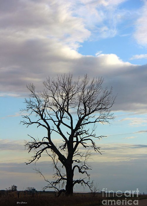 Tree Greeting Card featuring the photograph Lone Tree by Yumi Johnson