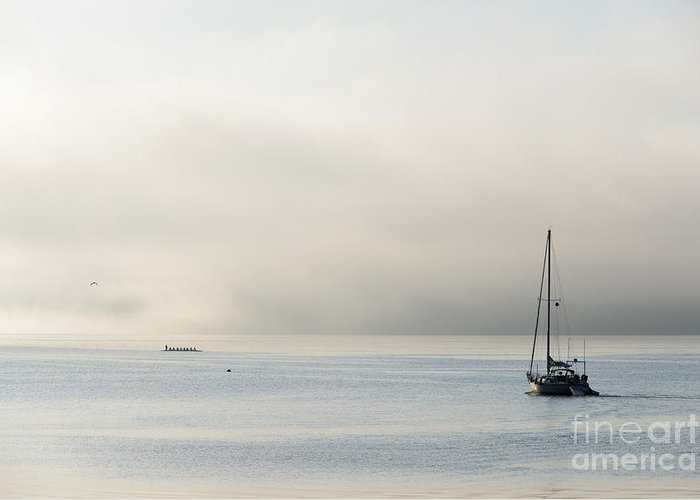 Fog Greeting Card featuring the photograph Morning Mist by Mike Dawson