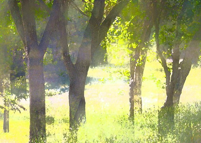 Trees Greeting Card featuring the photograph Oaks 25 by Pamela Cooper