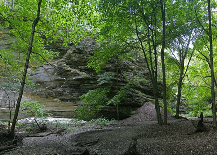 Forest Photographs Greeting Card featuring the photograph Ottawa Canyon by Gary Lobdell