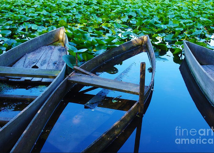 Art Greeting Card featuring the photograph Pateira Boats by Carlos Caetano