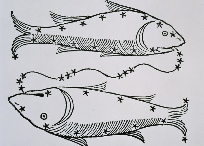 Pisces Greeting Card featuring the drawing Pisces by Italian School