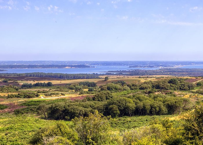 Studland Greeting Card featuring the photograph Purbeck - Dorset by Joana Kruse