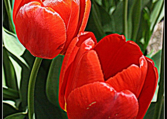 Tulips Greeting Card featuring the photograph Radiant In Red - Tulips by Dora Sofia Caputo Photographic Design and Fine Art