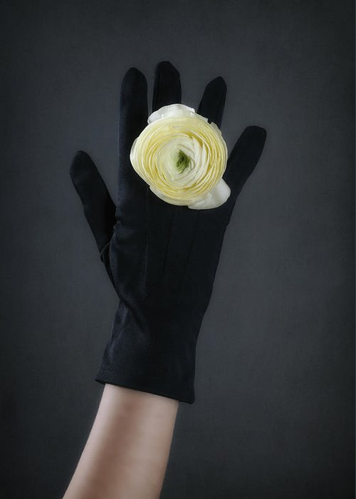 Flower Greeting Card featuring the photograph Ranunculus by Joana Kruse