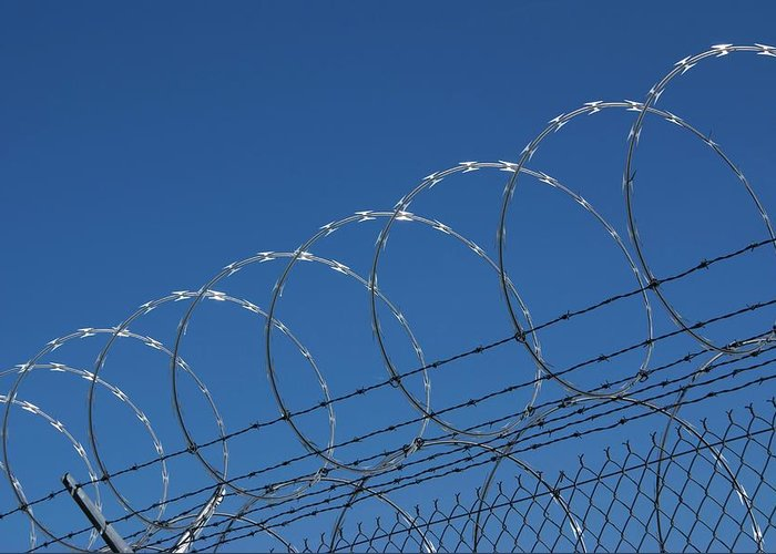 America Greeting Card featuring the photograph Razor Wire Fence In Las Vegas by Mark Williamson/science Photo Library
