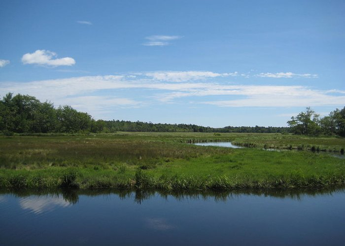 Landscape Greeting Card featuring the photograph Reflections Of Blue by Melissa McCrann