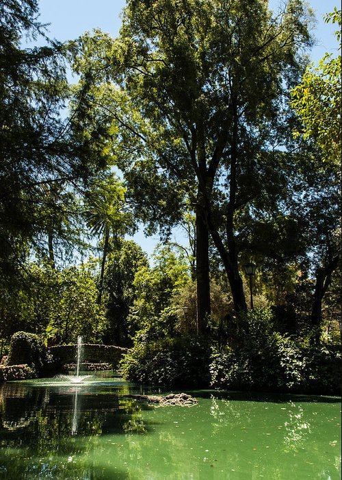 Seville Greeting Card featuring the photograph Seville - Park Maria Luisa by Andrea Mazzocchetti