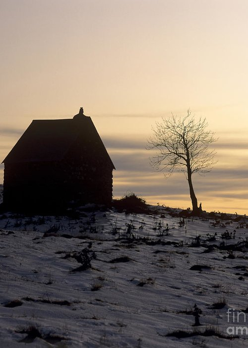 Outdoors Greeting Card featuring the photograph Silhouette Of A Farm And A Tree. Cezallier. Auvergne. France by Bernard Jaubert