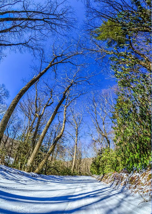 Snow Greeting Card featuring the photograph Snow Covered Road Leads Through The Wooded Forest by Alex Grichenko