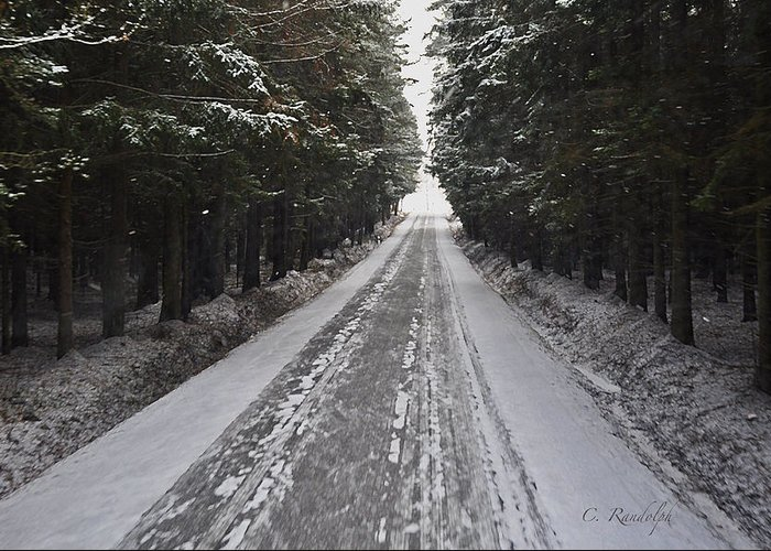 Winter Scene Greeting Card featuring the photograph Stopping By Woods by Cheri Randolph