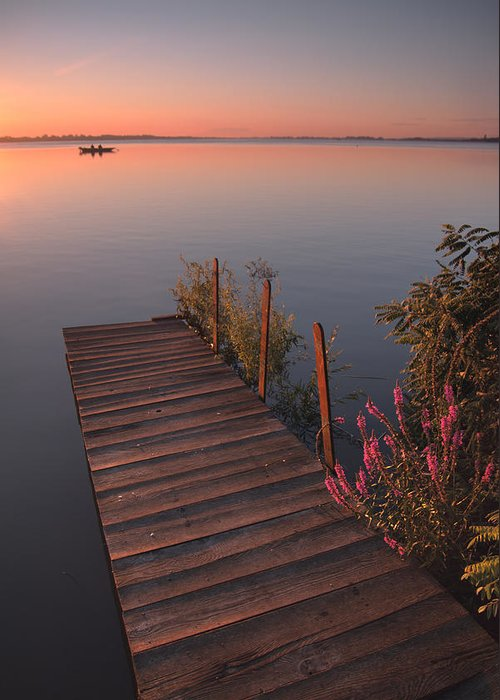 Landscape Greeting Card featuring the photograph Summer Morning by Davorin Mance