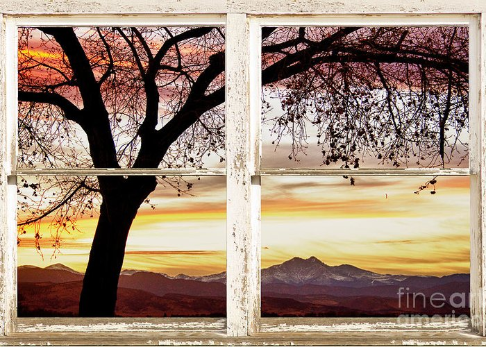 Windows Greeting Card featuring the photograph Sunset Tree Silhouette Abstract Picture Window View by James BO Insogna