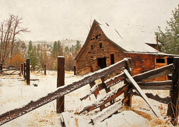 Barns Greeting Card featuring the photograph Surviving The Elements by Donna Kennedy