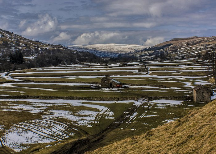 Swaledale Greeting Card featuring the photograph Swaledale Yorks Dales by Trevor Kersley