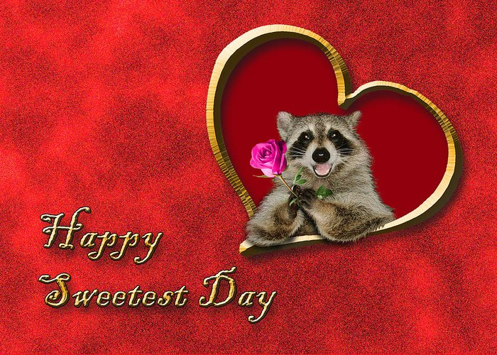 Sweetest Day Greeting Card featuring the photograph Sweetest Day Raccoon by Jeanette K