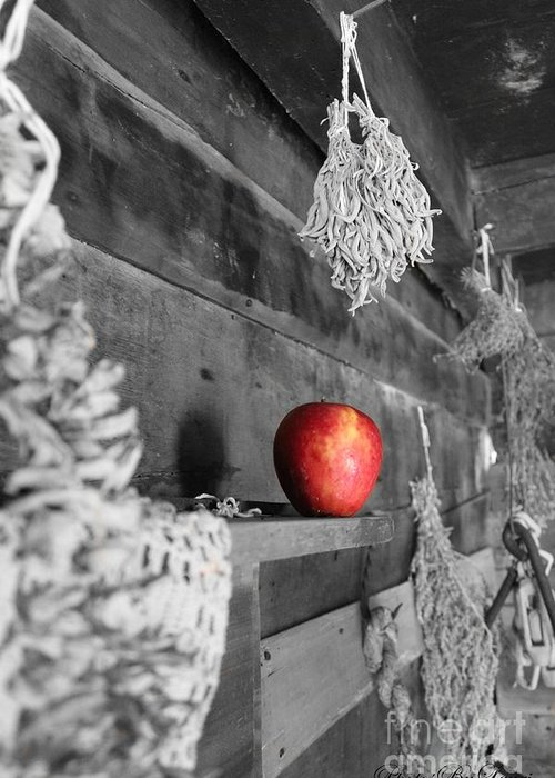 Photographs Greeting Card featuring the photograph The Apple by Laurinda Bowling