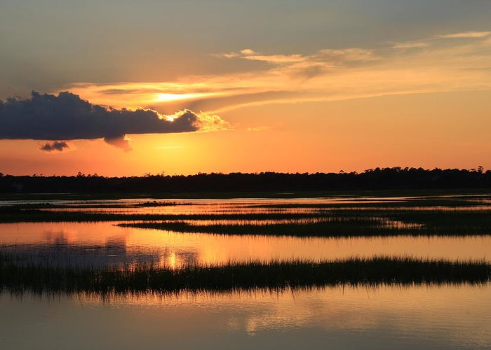 Wilmington Nc Greeting Card featuring the photograph Tidal Marsh Wilmington Nc by Mountains to the Sea Photo